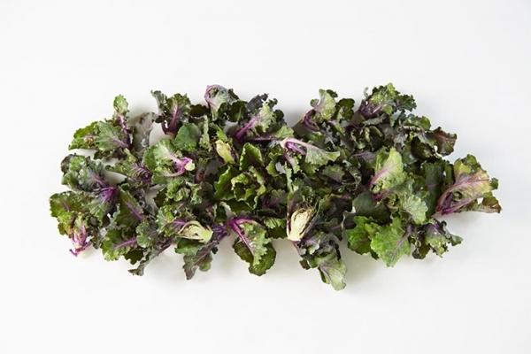 Flower Sprout - ny grønnsak i Norge