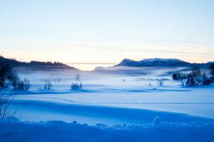 Vinterferie med klisterføre i sør – sibirkulde i nord