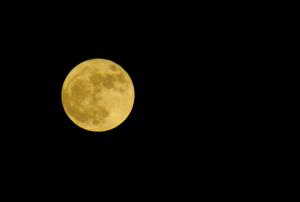Menn sover dårligere enn kvinner første del av månefasen