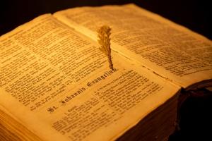 Ny dansk bibeloversettelse møter kritikk